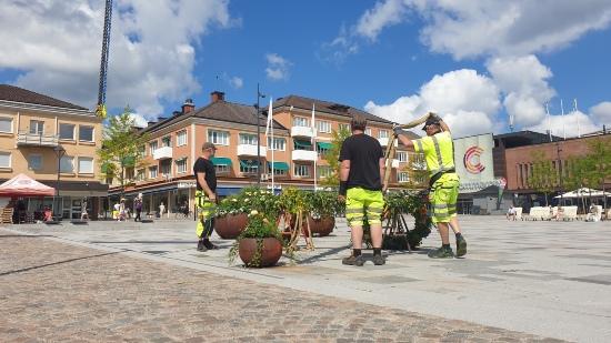 Midsommarstång på Hertig Johans torg i Skövde