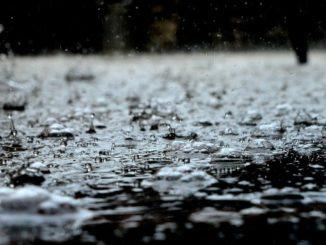 regn väder