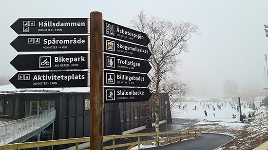 Billingecentret, på Billingen i Skövde. I bakgrunden syns skridskobanan på Billingen.