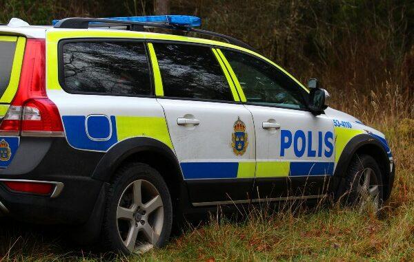 polisbil-vid-skog