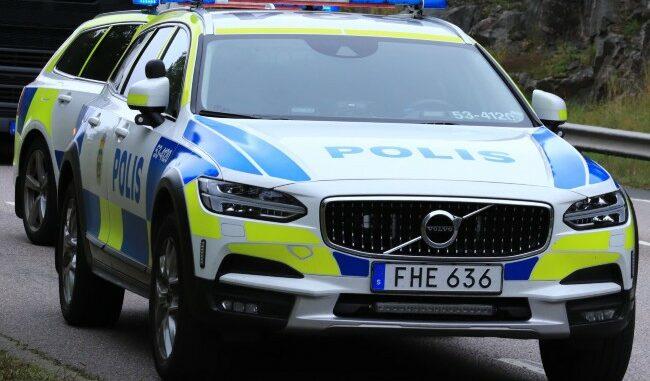 polisbilar-dag